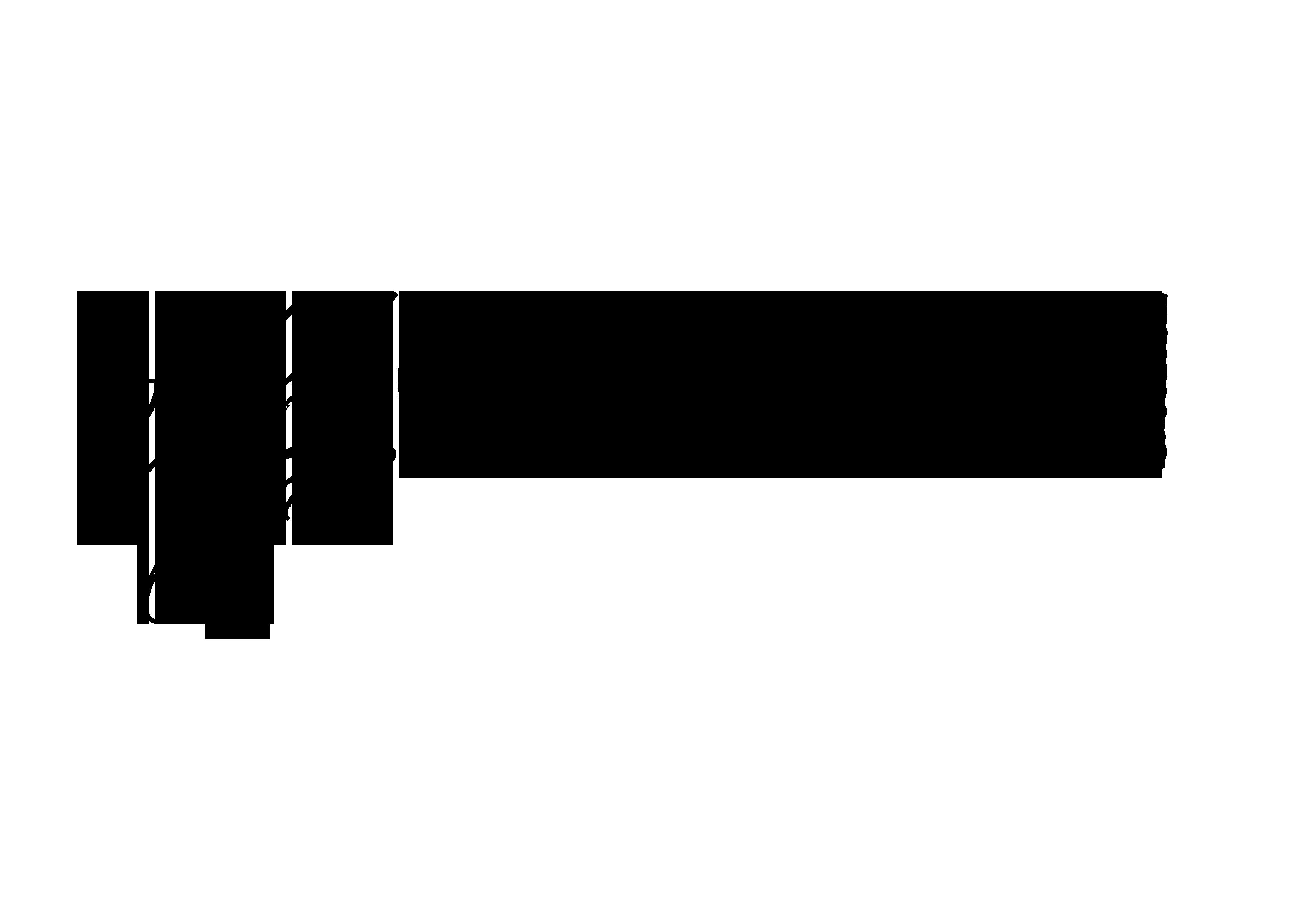 MaeCoon Logo © S.E. Mae