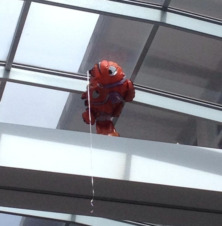 Nemo at The Children's Hospital Westmead