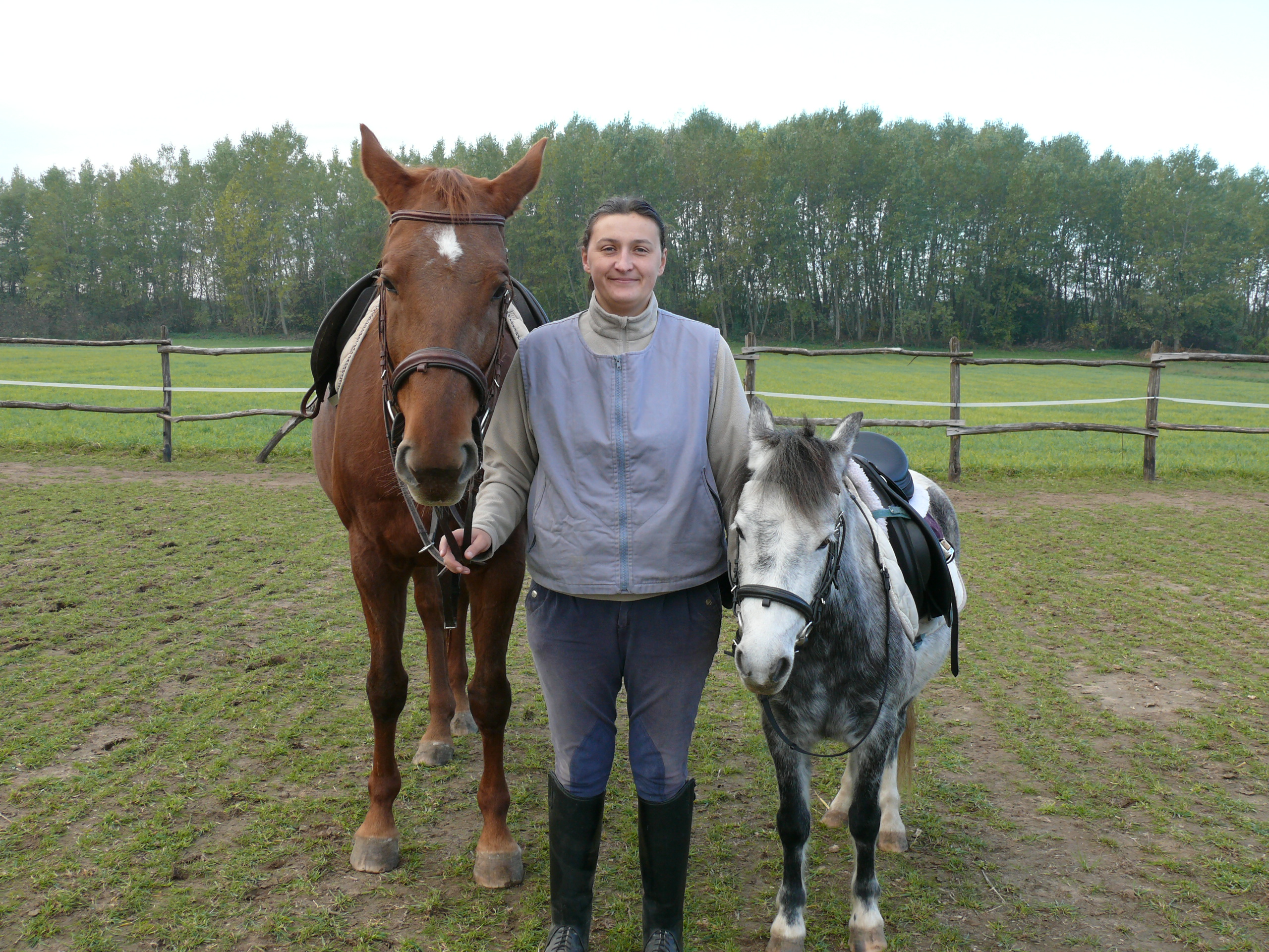 Adél with the two therapy horses: Barbie and Dolly