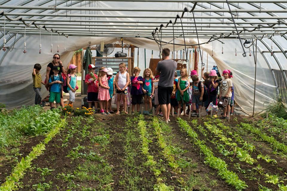 Eco-Blast field trip to organic garden